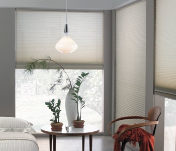 honeycomb shades in Raleigh house
