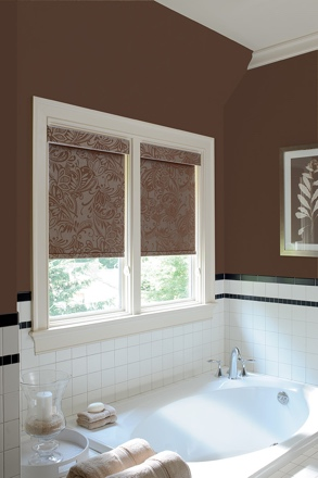 Raleigh roller shades small