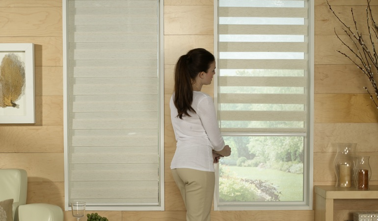 Woman in front of a Transitional zebra shade